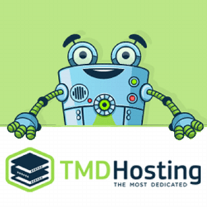 TMD Hosting Review 2016
