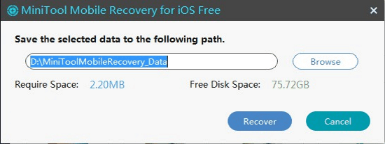 iPhone video recoverys
