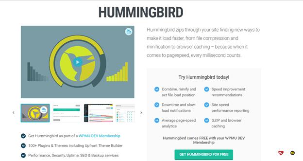 BEST WordPress caching Plugins HUMMINGBIRD