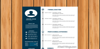 Professional Resume Design