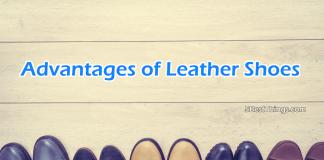Advantages of Leather Shoes
