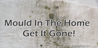 Mould In The Home