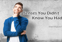 Senses You Didn't Know You Had