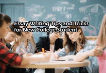 Essay Writing Tips and Tricks for New College Student
