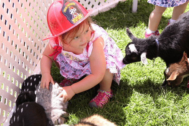 Petting Zoo Theme party