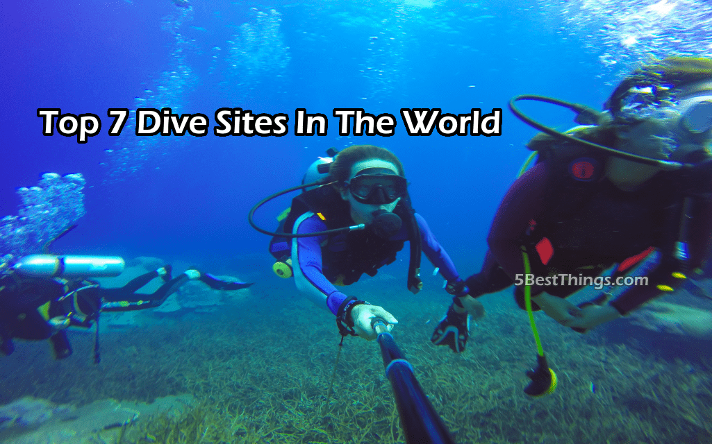 Top 7 Dive Sites In The World You Need To Explore