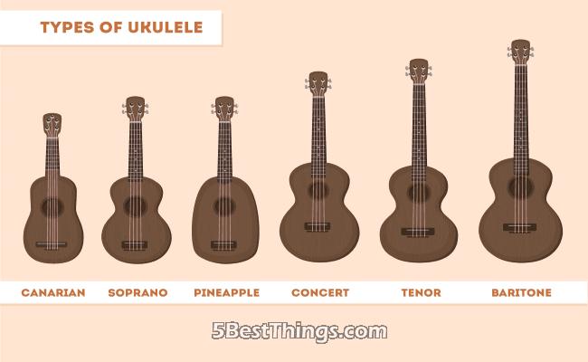 types Ukulele