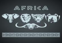 Africa Big Five Animals