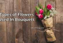 Types of Flowers Used In Bouquets