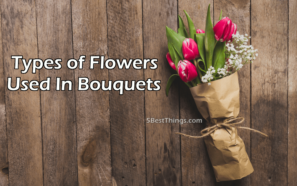 5 Types of Flowers Used In Bouquets | 5 Best Things