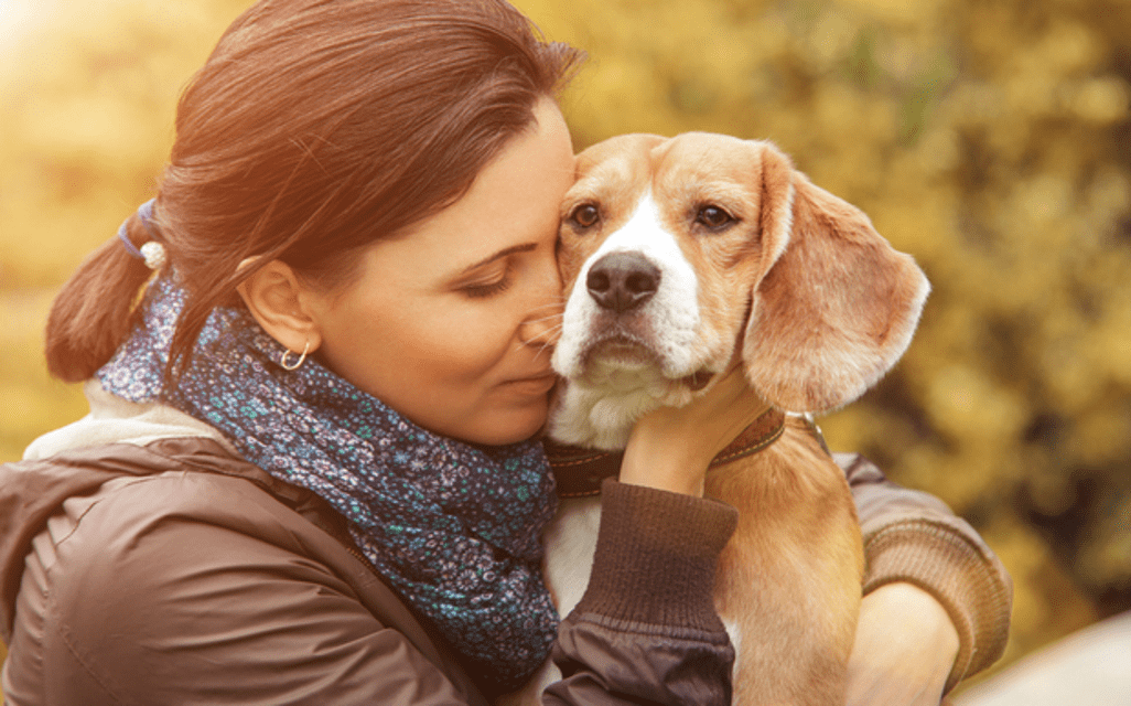 pets keep you away from stress