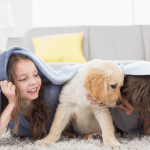 effects of dog bites on your family