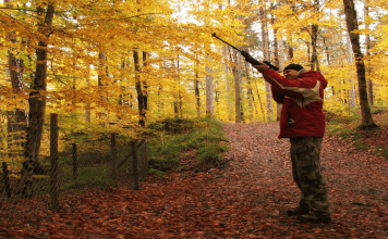 Hunting Process