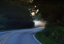 Perfect Road Trip For You And Your Partner